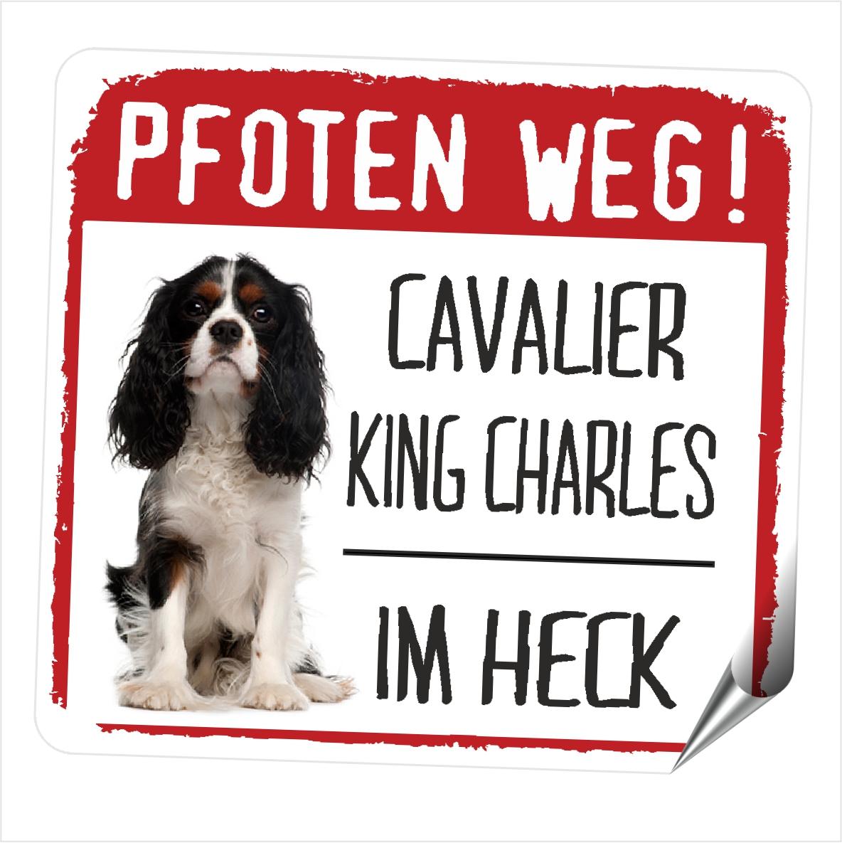 512d974fb7 Siviwonder Shop | Cavalier King Charles Spaniel PFOTEN WEG | online ...